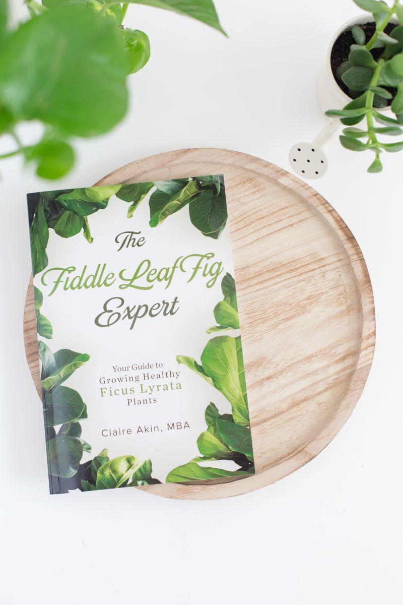 FLF-Expert-Book-1