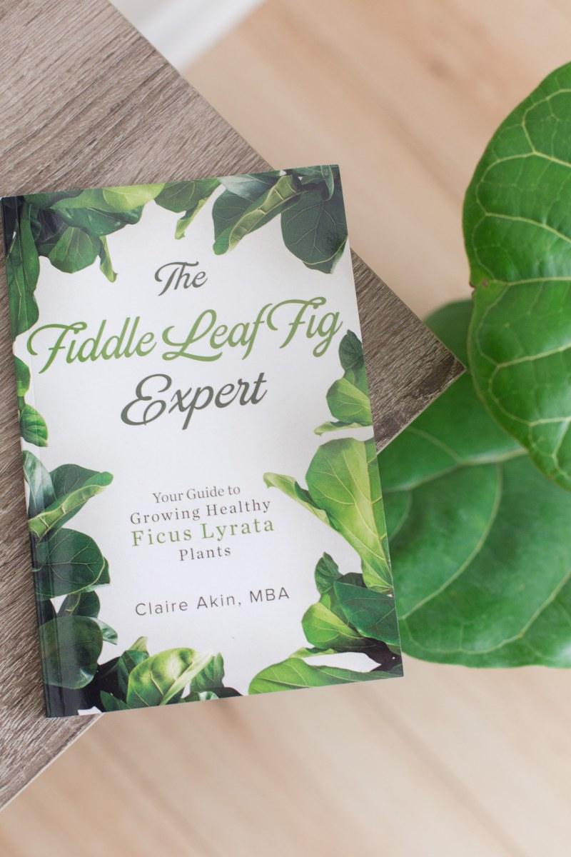 FLF-Expert-Book-2