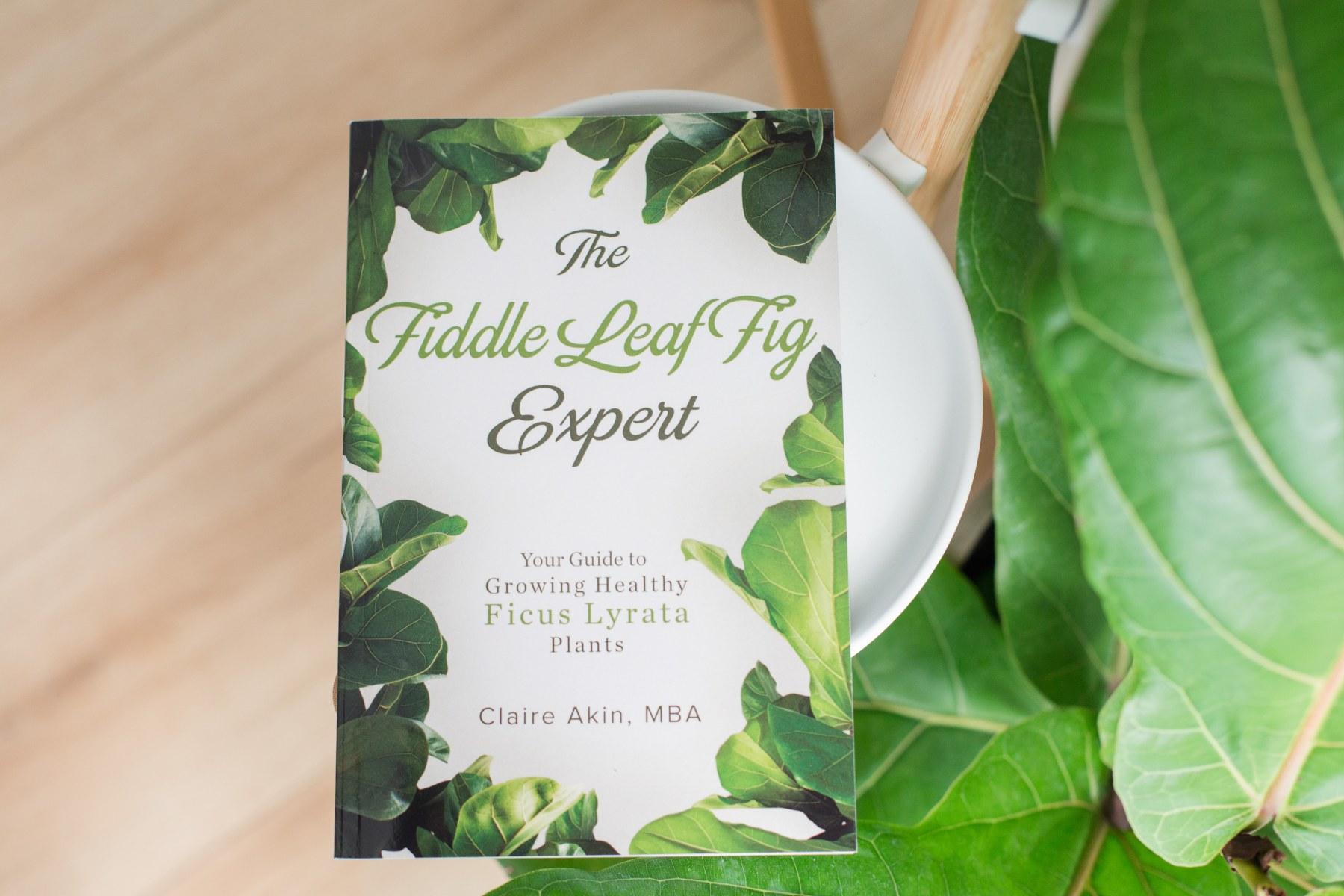 FLF-Expert-Book-3