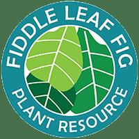 The Fiddle Leaf Fig Plant Resource Logo