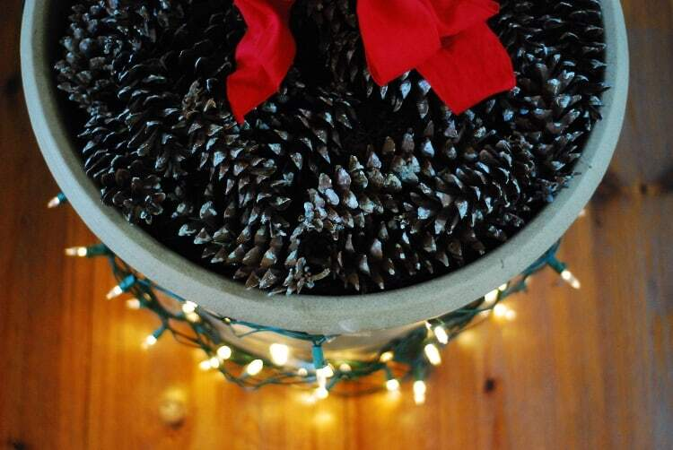 Deck the Halls And Your Fiddle Leaf Fig Tree This Christmas Season pine cones