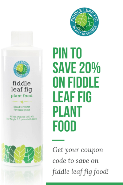 Fiddle Leaf Fig Plant Food Coupon Code Promo