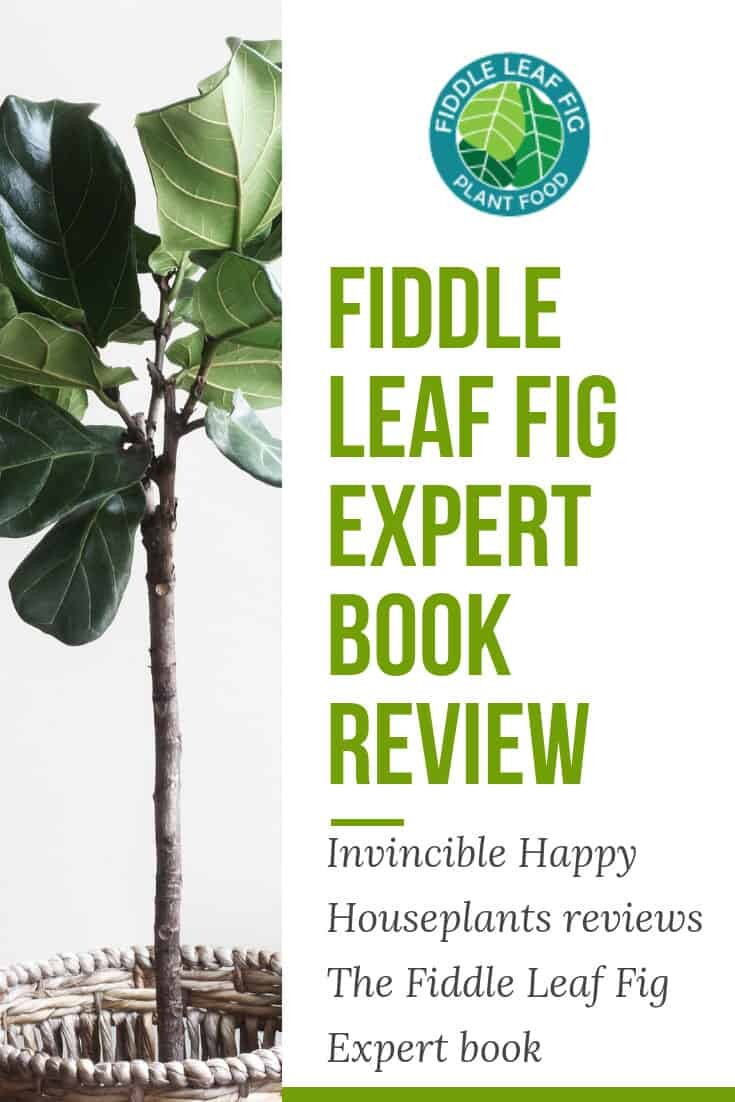Indoor Plant Book Review from Invincible Happy Houseplants