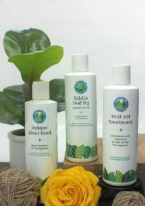 Fiddle Leaf Fig Products