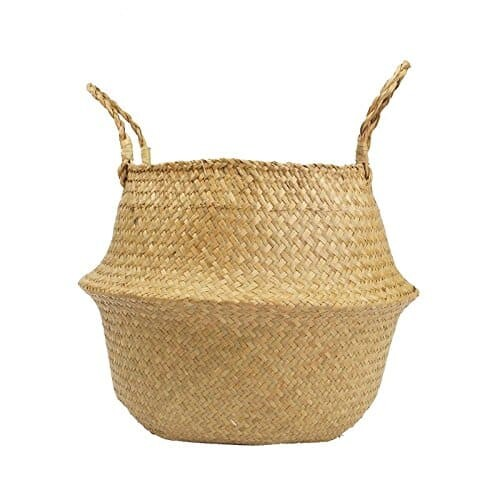 Woven Seagrass Basket for Fiddle Leaf Fig