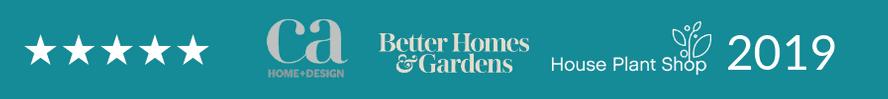 Houseplant shop 2019