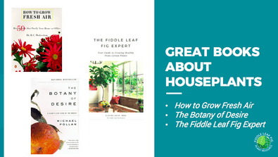 books about houseplants