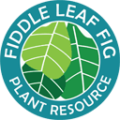 fiddle leaf fig plant resource logo