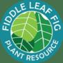 fiddle leaf fig plant resource logo